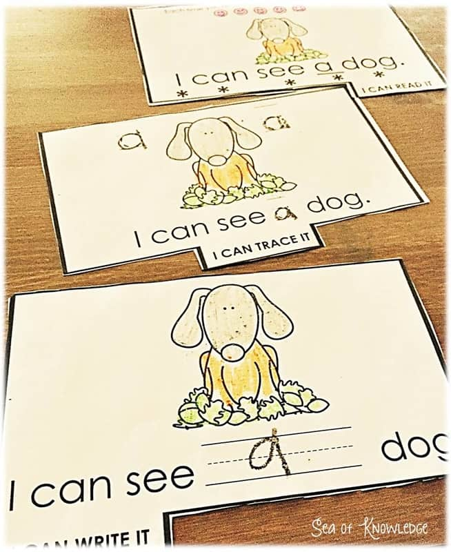 FREE Sight Word Interactive Tab Readers