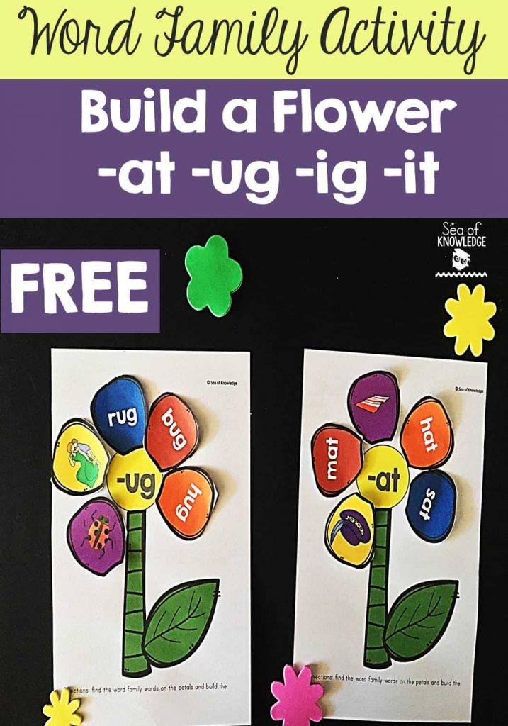 Word Family Activity: Build a Flower -at -ug -ig -it