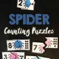 spidercountingpuzzles