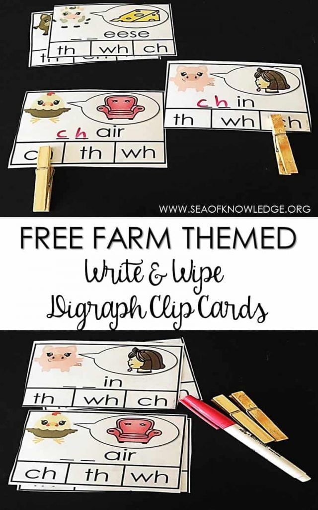 Digraph Write and Wipe Clip Cards