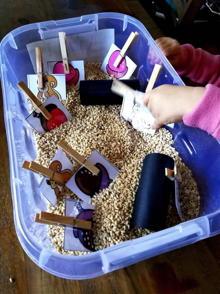 Fall Sensory Bin Acorns and Squirrels Color Picture Match
