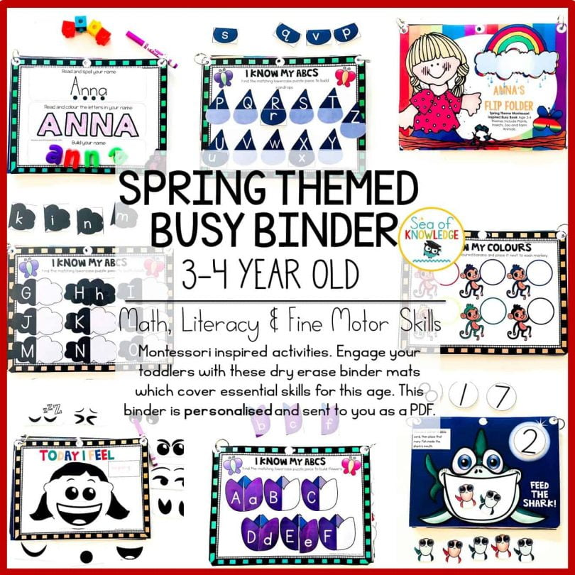 Spring Themed 3-4 Year Old Busy Binder1