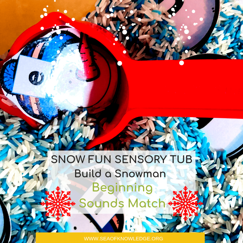 Winter Beginning Sounds Activities – Build a Snowman SNOW FUN Sensory Rice Tub!
