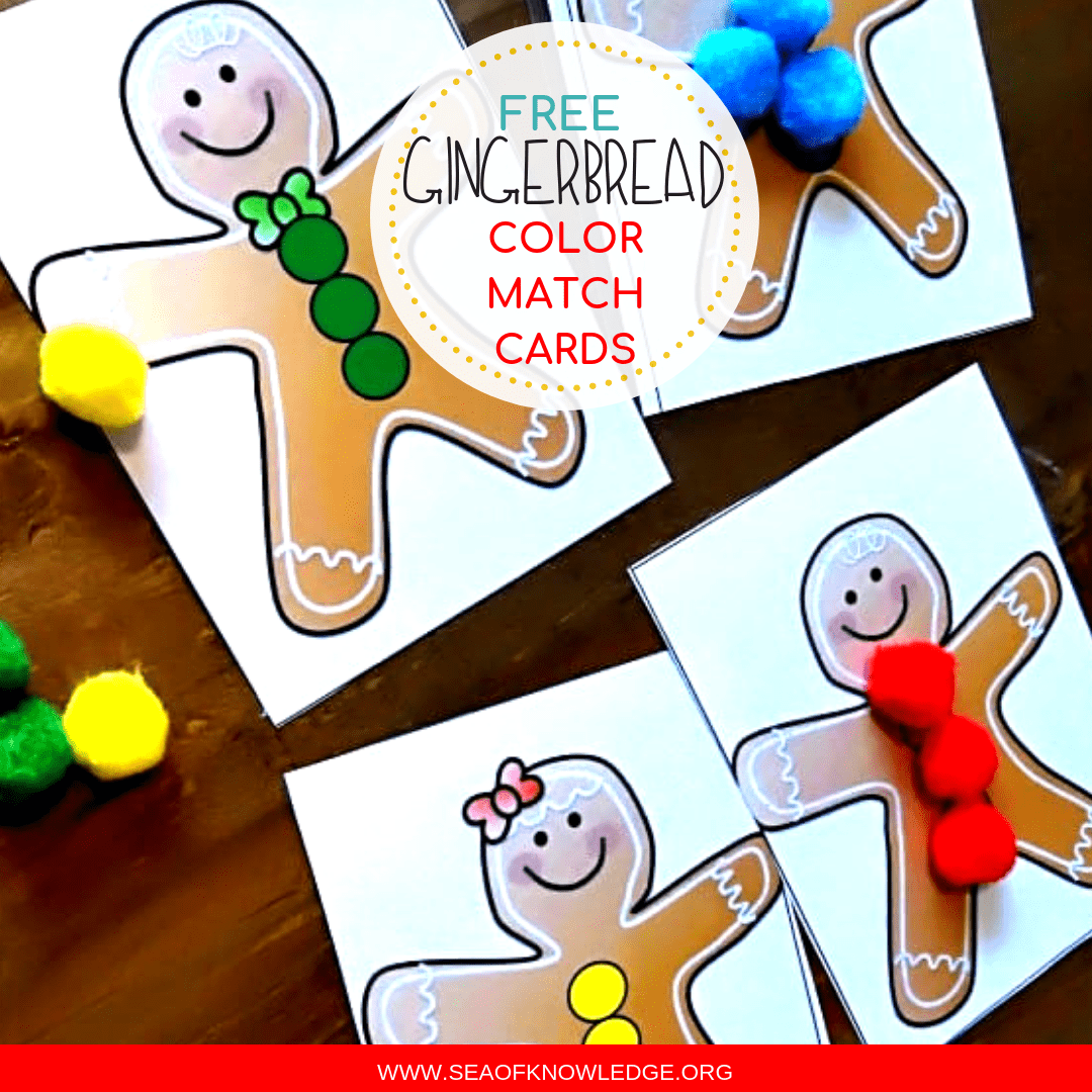 Gingerbread Color Match Hands-on Activity Cards Toddlers will LOVE!