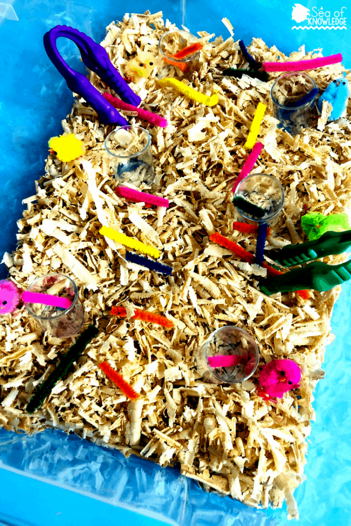 This simple sensory tub is so much fun to set up! It takes just minimal materials too.  Here's what you'll need:  Coloured rice or some simple fillers from the dollar store like the one I used below (shaved wood). Alligator tongs Mini coloured or clear cups (like the ones below) Colourful chicks Coloured pipe cleaners To play, kids will pick up the pipe cleaners and place them into the matching coloured chick. Be sure to cut the pipe cleaners in half to create small 'worms' to feed the chicks! ;)