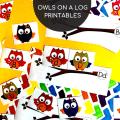 Owls Alphabet Matching Cards