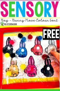 Bunny Nose Sensory Bag Colour Sort