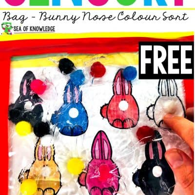 Make a Super Easy Squishy Bunny Noses Sensory Bag Colour Sorting with Your Kids!