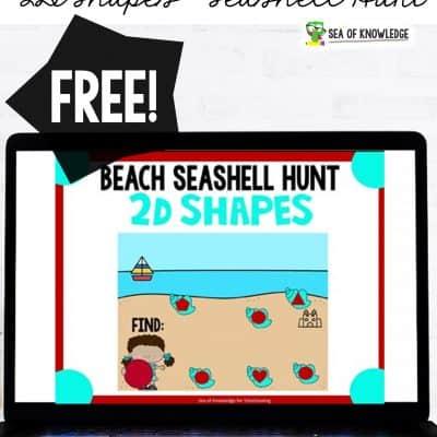 2D Shapes Digital Activity Seashell Hunt