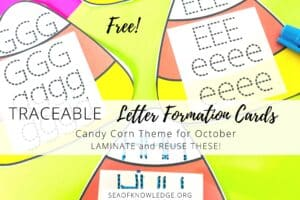 Traceable Letters Cards Candy Corn